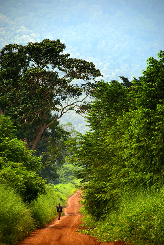 Bolaven Plateau 14