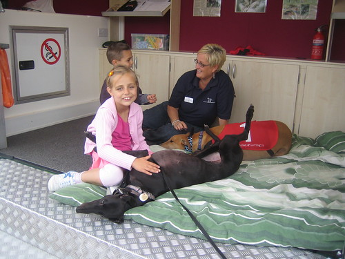 Webbs of Wychbold September 2009.  Volunteer Jill with greys Sadie and Bobby being cuddled by visiting children