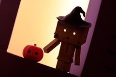 Halloween & Pumpkin (Ali Tse) Tags: halloween pumpkin toy toys amazon limited danbo tuenmun  revoltech jfigure  danboard  townmuntownplaza