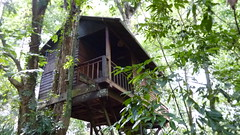Our tree house in Khao Sok
