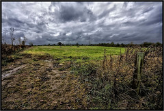 Cloudy. (Pat Dalton...) Tags: trees sky field grass clouds grey gate post mud wind leicestershire hedge hay bales canon450d sigma1770lens peatlingparva pdeee454 patdalton