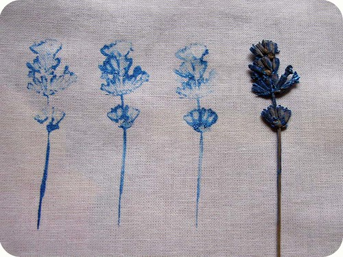 printing on fabric with lavender