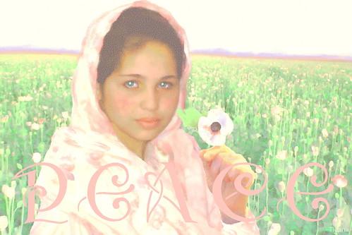 afgh girl peace2 t