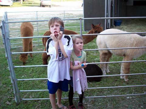 Lorelei and Micci with Alpacas