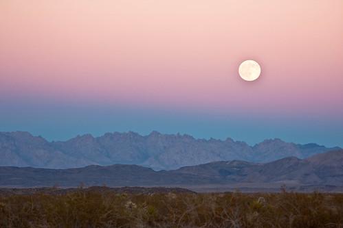 Moon Rising