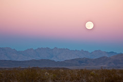 Moon Rising (LollyKnit) Tags: travel joshuatreenationalpark