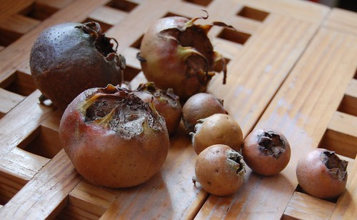 mixed medlars