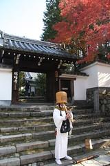 秋の明暗寺2009
