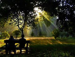companions.. (dream_maze) Tags: park morning trees winter light green grass yellow bench couple magic rays dhaka fp ban
