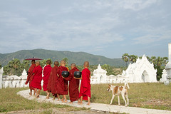 monks and friend 2 (NVH) Tags: monks myanmar mandalay youngmonks whitestupa hsinbyuimepagoda weddingcakepagoda