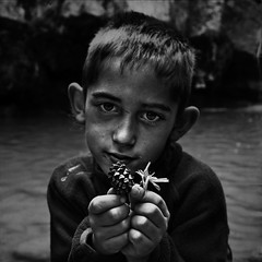 Boy with a flower and a pine cone (EudaldCJ) Tags: portrait bw monochrome album explore squareformat retrat 500x500 ripolls artlibre artlibres
