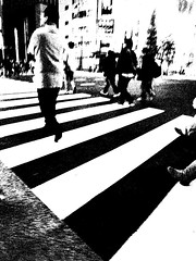 20091128_akihabara_34 (pqw93ct) Tags: bw white black monochrome japan night tokyo 東京 akihabara ricoh 秋葉原 夜 モノクロ 白黒 gx200