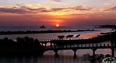 Sunrise Above the Red Sea (Ammar Al-Fouzan) Tags: sky sun clouds sunrise redsea elgouna ammaralfouzan canon5dmarkii canonef50mmf12lusmlens