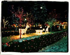 christmas lights (Brannin Photography) Tags: christmas lights utah village decoration ems ogden goldstaraward