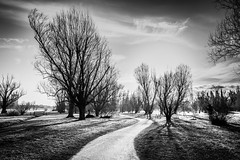 In a winter day (voxpepoli) Tags: