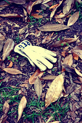 anyone lose a glove? (share your widsom) Tags: ocean trees sunset ohio red sun lighthouse brick beach water graveyard leaves june virginia sand focus tombstone southcarolina ground glove summertime yachts 2009 summervacation yellowfever westvirgina hiltonheadisland canonrebelxsi