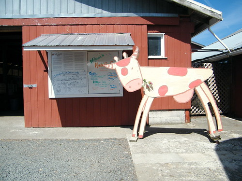 Little Qualicum Cheeseworks / Morningstar Creek Winery