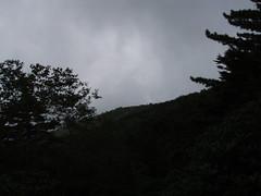 P9050169
