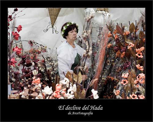 El declive del Hada