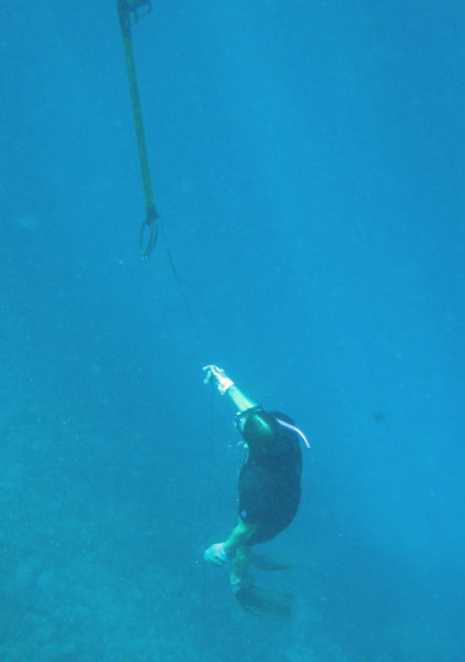 Drew spear fishing the reef in Tonga