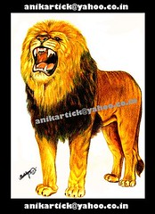 LION of ART- Chennai Animation Artist ANIKARTICK (KARTHIK-ANIKARTICK) Tags: portrait art illustration painting sketch artist lion animation chennai pencilsketch pencilart animator indianart portraitartist lionphotos animationmentor artartart landscapeartist illustrationart kartick 2danimation indianartist artistartist arenaanimation lionpainting chennaiartist liondrawing animationartist lionimages anikartick sijuthomas tamilnaduartist artistanikartick chennaianimation chennaiart mumbaianimation delhianimation puneanimation 2danimator thomasphoenix 2danimationartist 2danimationskerches