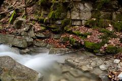 Cauces (chavinandez) Tags: autumn huesca aragón losvallesoccidentales aragn fotolocus
