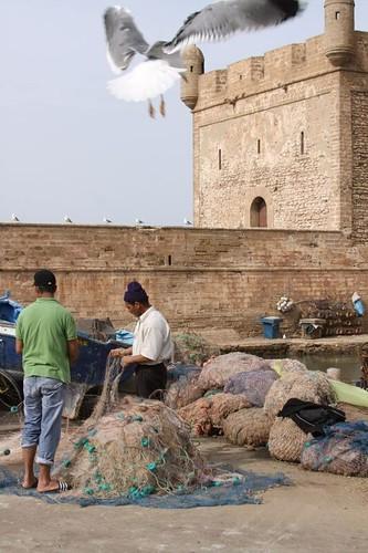 Essaouira port...