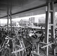 Railway and bikes (Hen's March) Tags: germany kodak tmax bikes railway bahnhof 400 2009 fahrrder aalen steinheil fahrradstnder adox cassar 7545 messgolf