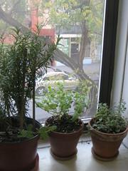 IMG_4408 (flaschenpostpics) Tags: nyc myfirstapartment manhattanapartment apartmenttherapyny uppereastsidestudio