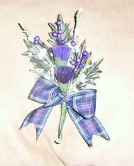 *stu 235 b/h* bestmans scottish thistle buttonhole with anderson tartan ribbon