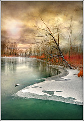 Cold Line (Jean-Michel Priaux) Tags: trees winter lake snow france cold tree green art ice nature water illustration forest photoshop river painting landscape deutschland nikon flood hiver dream line peinture dreaming alsace neige paysage froid hdr fort ligne anotherworld savage sauvage fret mattepainting ried d90 priaux shoenau vanagram digitalflood vosplusbellesphotos