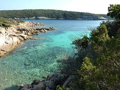 Sur le sentier littoral au S de Capu di Fenu : vers la Cala di Paraguano, une des criques de la partie Nord