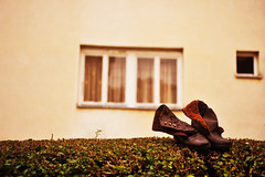 Shoes... (Nick-K (Nikos Koutoulas)) Tags: nikon shoes nikos 28 f28 nickk 3570mm skopje bitola  d700   koutoulas