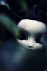 Someone's watching you... (S h a k ) Tags: white dark doll mysterious groove pullip lovely mir lisbet