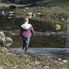 Strolling through the river at low tide