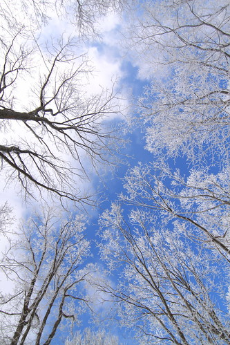 "Frozen Skies • <a style=""font-size:0.8em;"" href=""http://www.flickr.com/photos/23215983@N02/13122170804/"" target=""_blank"">View on Flickr</a>"