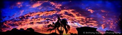 After the Scorching (Anthony S.) Tags: anthonys anthonysuperina severeweather summer sunset southernhemisphere seasonal skies sky skyscape goldenhour skyline dusk dramaticskies clouds contrast contrastingskies cloudscape cloudscapes cloud colour vibrant vivid sunsets contrastingcolours contrastofcolours outdoor photoborder canon canoneos eos endofsummer nature nofilter australia panorama panoramic