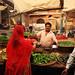 Venedor de verdures