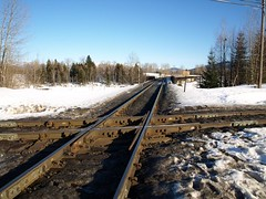 Railroad Intersection (Designer Michael) Tags: winter snow evening diamond intersection meltingsnow funinthesun railroaddiamond