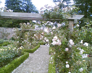 Rose Garden - Sewerby Hall