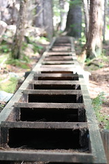 Gavan Hill Steps