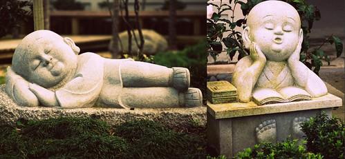 Little Buddhas