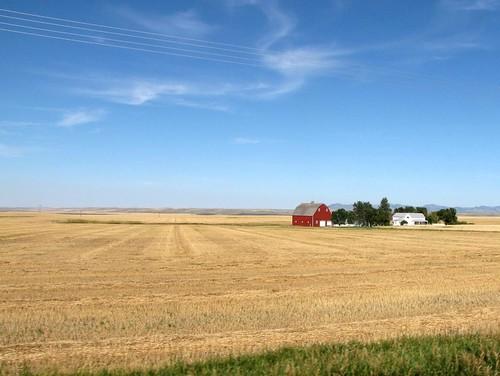 Montana Drive-18