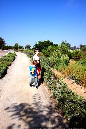 brothers walking in encinitas - _MG_3590