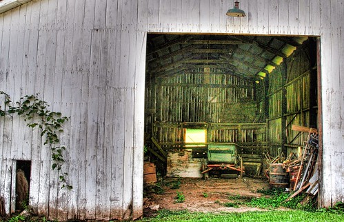 Into an Old Barn