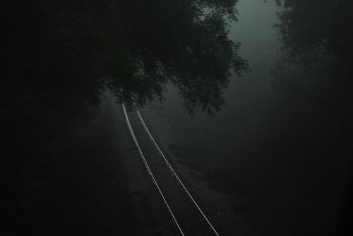 Shadow of the fog...