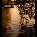 Lake @ Summer Palace