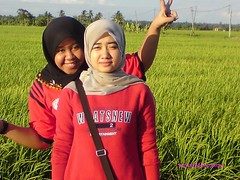me at sekinchan (ajue arzuena) Tags: paddy malaysia sawah sekinchan