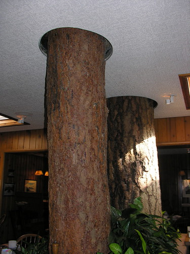 Tree in Pine Tavern Restaurant