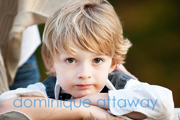 little boy , charlottesville family photographer